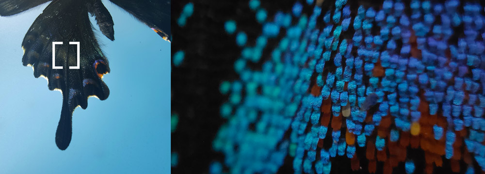 OPPO FindX3 Pro 5G十年磨一剑,Galaxy S21 Ultra机皇地位动摇! 8
