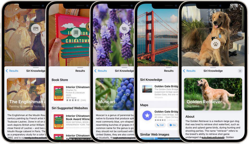 iOS 15、iPadOS 15将在9月21日在大马推送 3